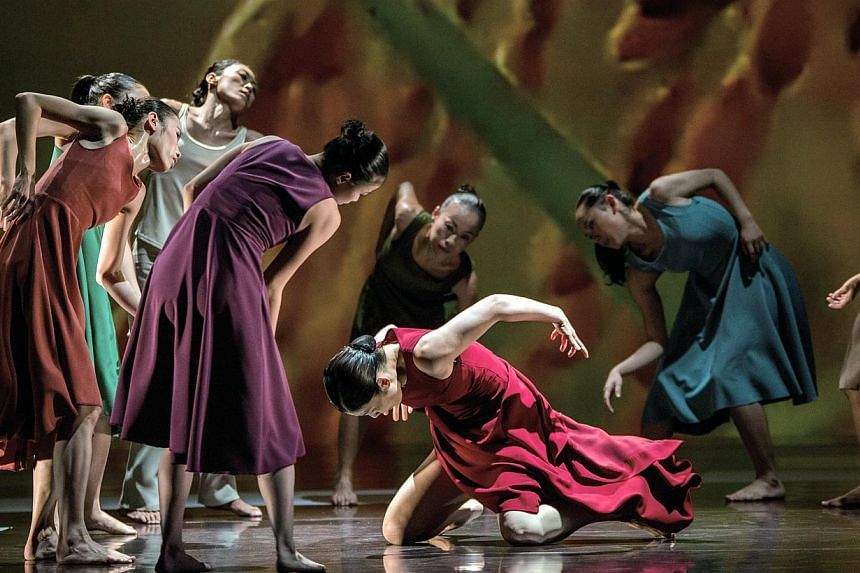 Cloud Gate Dance Theatre's Rice, staged at the Esplanade Theatre on Saturday, is not the first of Taiwanese choreographer Lin Hwai-min's pieces inspired by the humble grain which fuels most of Asia. -- PHOTO: LIU CHEN-HSIANG