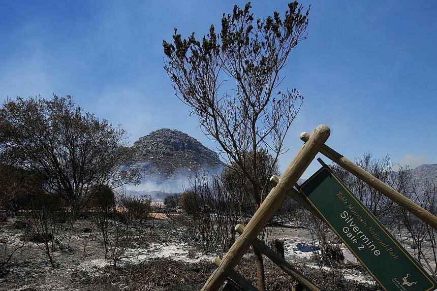 A general view of the smoldering remains of the Silvermine reserve in Cape Town, South Africa on March 2, 2015. -- PHOTO: EPA