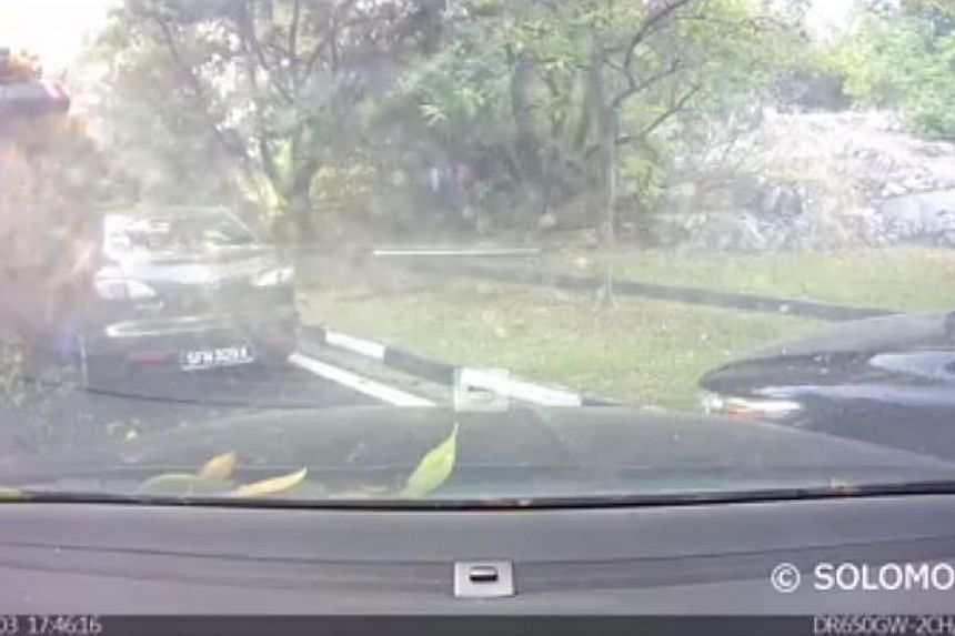 An onboard camera capturing the moment when a tree fell on a car. -- PHOTO: SCREENGRAB FROM YOUTUBE