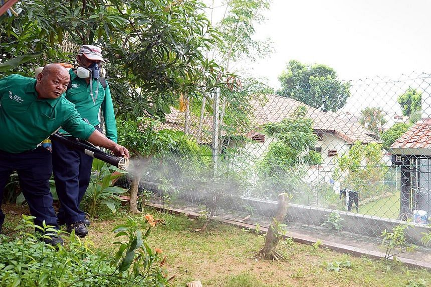 National Environment Agency (NEA) workers spraying insecticide in a garden to kill the larvae of the Aedes mosquito. The NEA has put up a tender for proposals to study the possible side effects of using male Wolbachia-carrying mosquitoes to fig