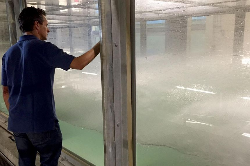 Brian Haus, professor in the department of ocean sciences at the University of Miami Rosenstiel School of Marine and Atmospheric Sciences, in Miami, Florida looks on as a storm rages inside the world's largest indoor hurricane simulator, known as SUS