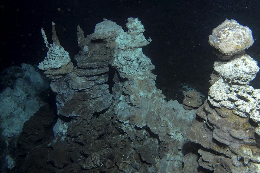 A hydrothermal vent field along the Arctic Mid-Ocean Ridge, close to where 'Loki' was found in marine sediments, is seen in this undated handout image courtesy of the the Centre for Geobiology at University of Bergen, Norway.-- PHOTO: REUTERS