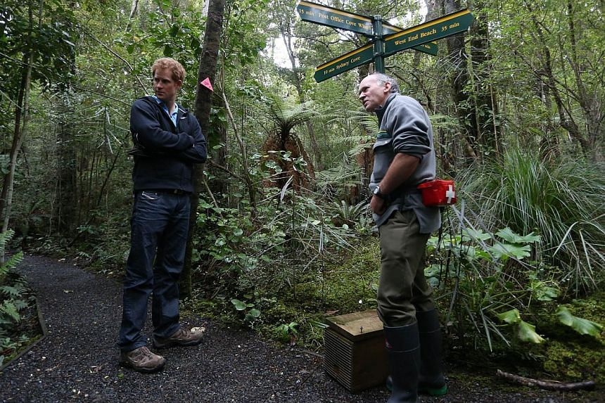Britain's Prince Harry (left) is shown how traps work by DOC ranger Phred Dobbins at Ulva Island in New Zealand on May 10, 2015. -- PHOTO: AFP
