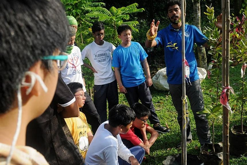 Outward Bound Singapore (OBS) Instructor Shaik Muhammad Iftikhaar (far right), teaching the students the correct way to plant the tree saplings.-- PHOTO:NATIONAL YOUTH COUNCIL