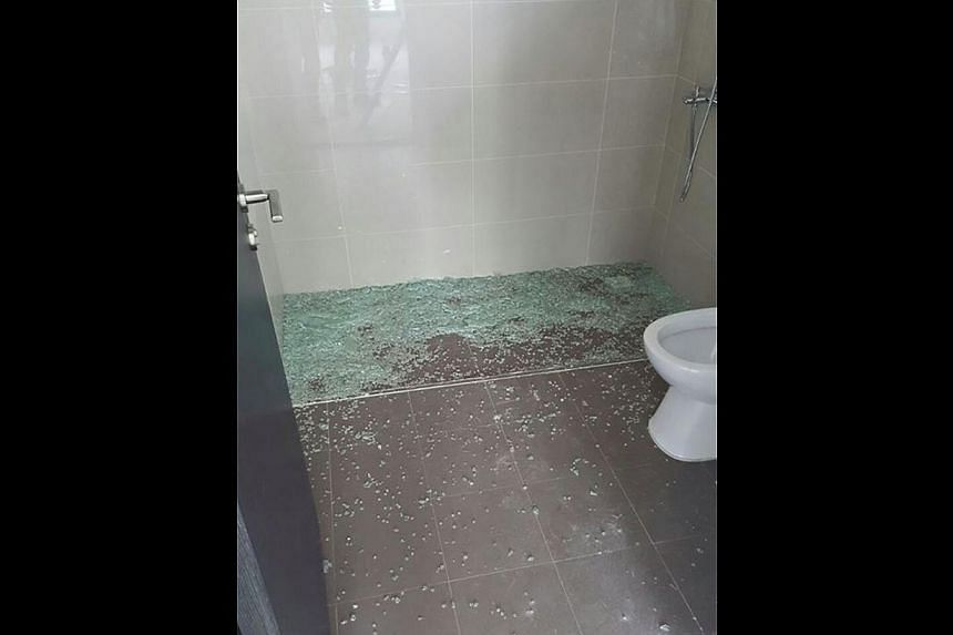 Complaints from residents included (clockwise from above left) a rusty lift door, water pooling along a corridor, a wardrobe without shelves and a shattered shower screen.
