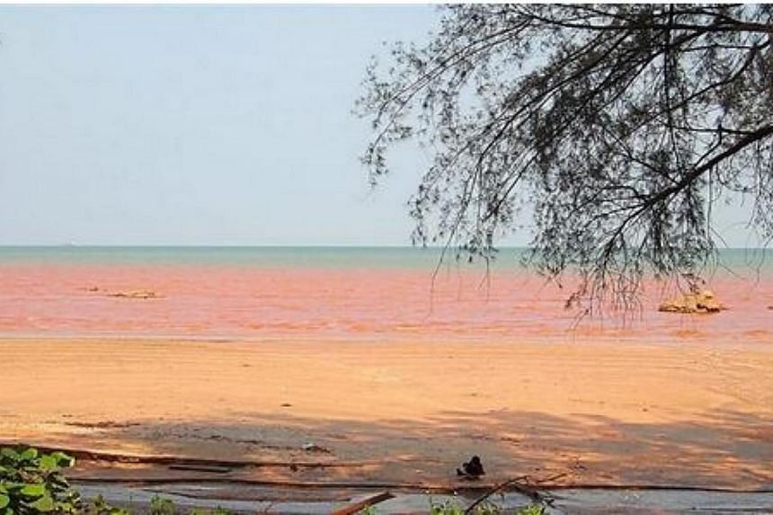 The sea near Kuantan Port turning red. -- PHOTO: THE STAR/ASIA NEWS NETWORK