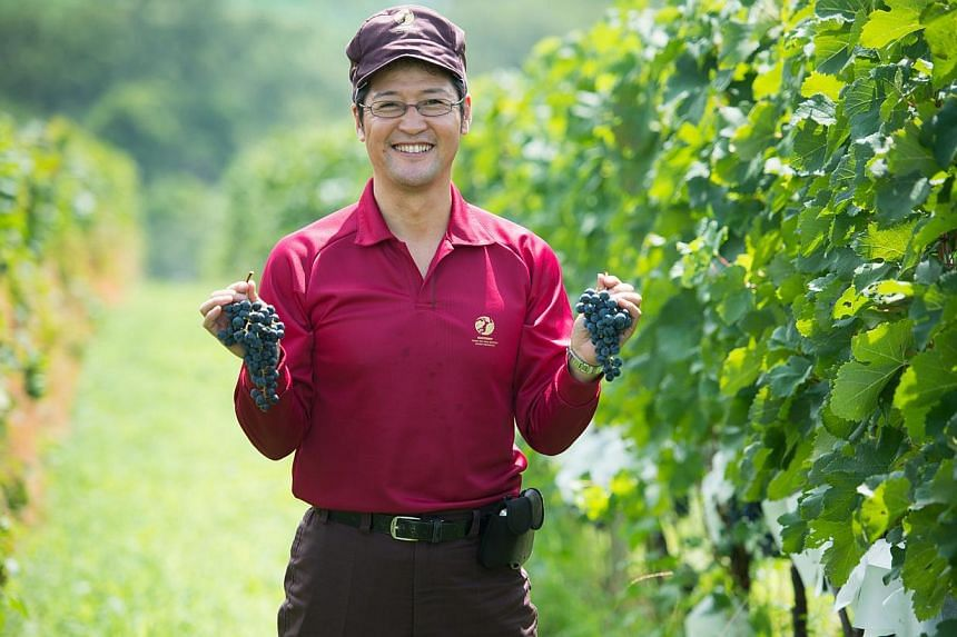 Mr Naoki Watanabe (above) says Japanese wines such as Tomi no Oka Red can pair well with Singapore food. -- PHOTO: SUNTORY TOMI NO OKA WINERY
