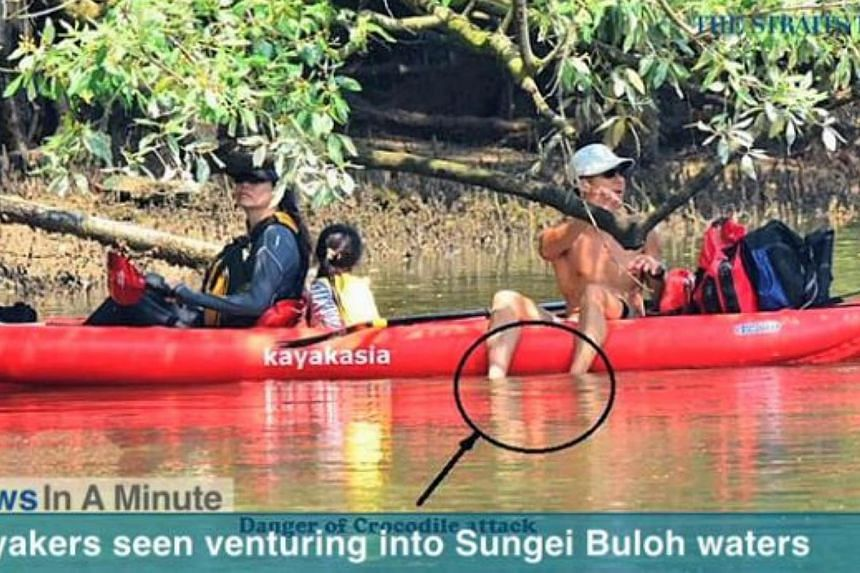A couple with a young child was spotted kayaking at the Sungei Buloh Wetland Reserve by a nature photographer.