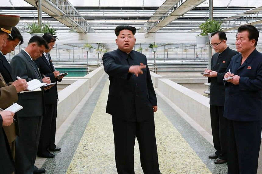 A large photo on the front page of the ruling party's official newspaper, the Rodong Sinmun, showed a clearly irate Mr Kim wagging an admonishing finger at a group of officials in a building housing terrapin breeding tanks. -- PHOTO: EPA