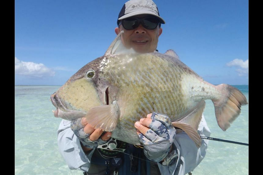 Mr Pang Kim Lock shows off a 5.3kg titan triggerfish caught on Christmas Island last November. It weighed more than twice the previous record. Mr Pang also caught a 5.61kg yellowmargin triggerfish.