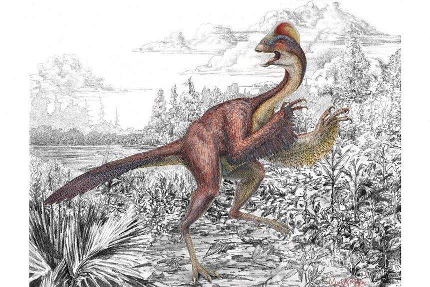 In this handout provided by the Carnegie Museum of Natural History, an artist's rendering depicts a previously unknown bird-like dinosaur that was formally introduced to the scientific community by scientists with the Smithsonians National Museum of