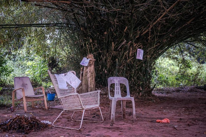 The makeshift community garden near Block 76, Commonwealth Drive. A group of five artists started a Facebook community page and made plans to clean up the site and propose it as an attraction and rest stop along the rail corridor, which runs close to