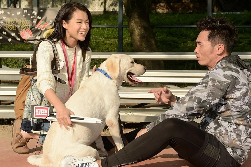 Hong Kong actress Myolie Wu plays a blind woman with a guide dog in Every Step You Take with co-star Moses Chan. -- PHOTO: TVB