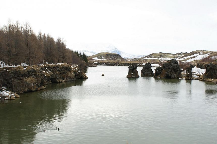 Lake Myvatn (above), Iceland's fourth largest natural lake, is where the Game Of Thrones crew shot a scene of the wildlings setting up their camp. Obsidian (above), a naturally occurring volcanic glass in Iceland, is made out to be a material that ca