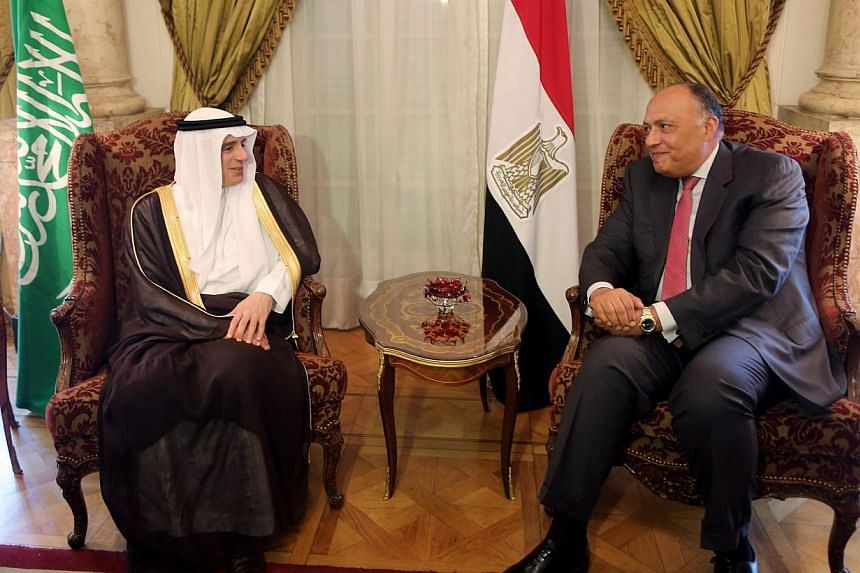 The new Saudi Foreign Minister, Adel al-Jubair (left), speaks to his Egyptian counterpart Foreign Minister, Sameh Shoukry (right), during a meeting in Cairo on Sunday (May 31). PHOTO: EPA