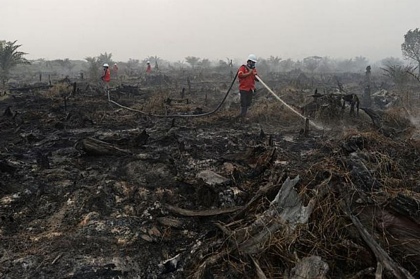 Firefighters employed by Asia Pacific Resources International Holdings Ltd. (April) hose down burnt-off vegetation from forest fires during a media tour of firefighting operations in Riau province in Pelalawan, Riau, Indonesia, on Wednesday, March 5,