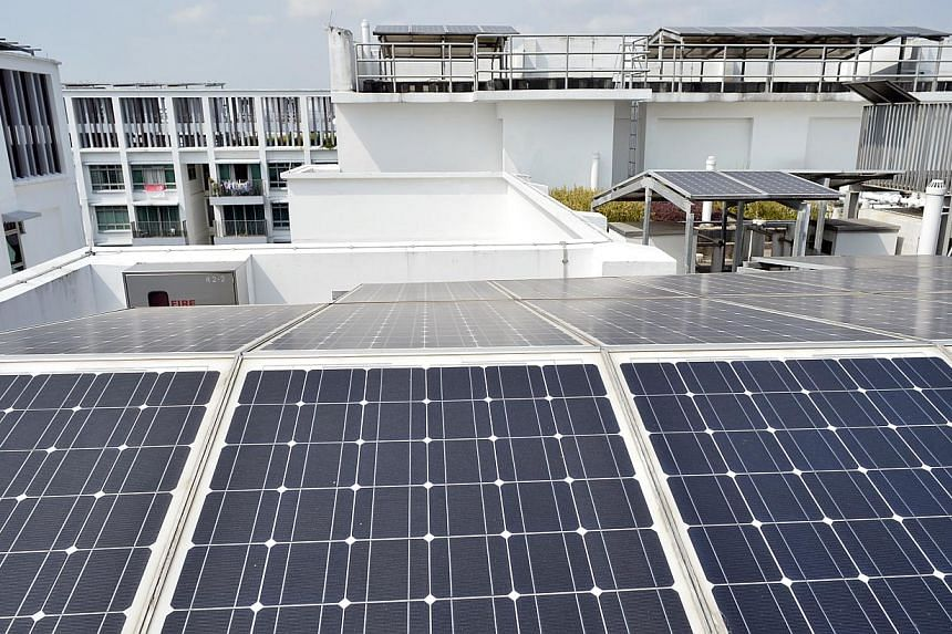 Solar panels at Treelodge@Punggol, HDB's first eco-precinct. -- PHOTO: ST FILE
