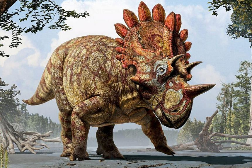 An artistic life reconstruction of a new horned dinosaur scientists named Regaliceratops peterhewsi in the paleoenvironment of the Late Cretaceous of Alberta, Canada released on June 3, 2015. -- PHOTO: REUTERS