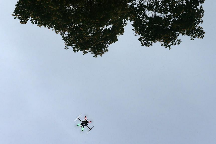A drone in operation at the Singapore Botanic Gardens on May 31, 2015. A small drone flew within a few hundred feet of a Southwest Airlines flight on Friday as the passenger plane was about to land at the Dallas airport. -- PHOTO: ST FILE