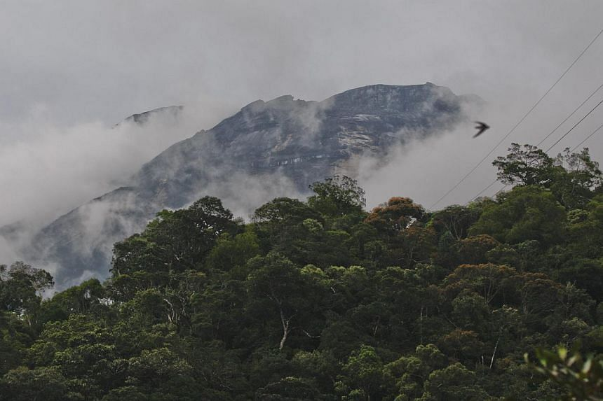 Two Canadians were prevented from leaving Malaysia after they were identified as being part of a group of tourists who stripped to pose for photos atop Sabah's Mount Kinabalu, where a deadly earthquake struck on Friday. -- PHOTO: EPA