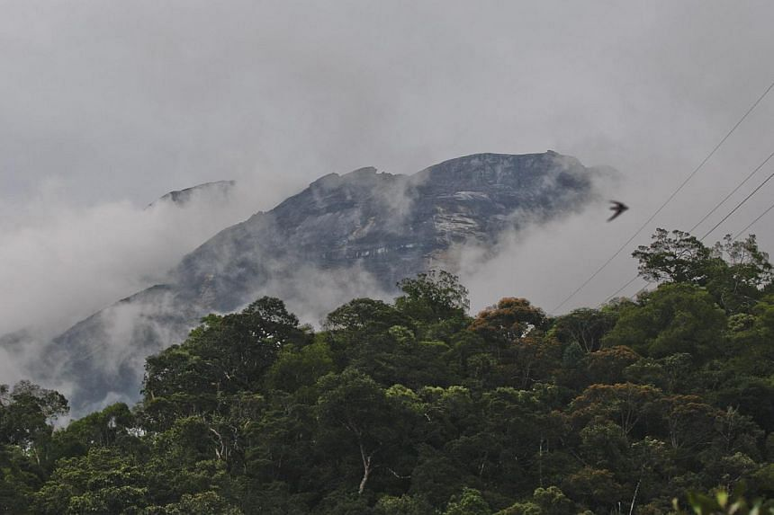 A general view of Mount Kinabalu in Kundasang, Malaysia, on June 6, 2015. Eight people were killed when a 6.0-magnitude quake struck Sabah on Friday (June 5). The victims were part of a group of 29 pupils and eight teachers who were on a field trip t