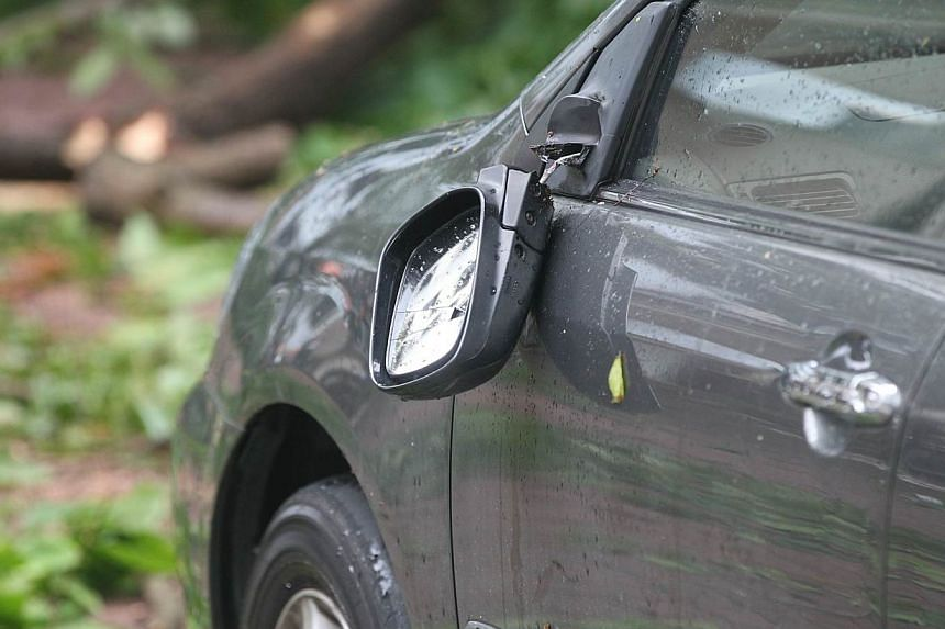 The car's sideview mirror was broken by the falling branch. -- PHOTO: SHIN MIN DAILY NEWS