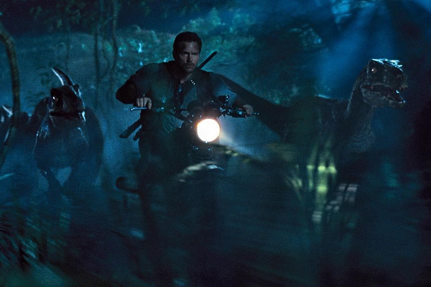 In Jurassic World, Chris Pratt plays a velociraptor-trainer who believes they are living creatures to be respected. -- PHOTO: UIP SINGAPORE