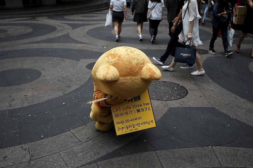 A promoter of a cat cafe sits crouched at Myeongdong shopping district in central Seoul. South Korea confirmed its 11th death from MERS, while reporting four new cases that brought the number of people diagnosed with the disease in South Korea