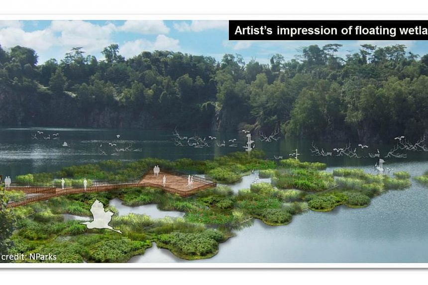 NParks will also be installing floating wetland units (artist's impression pictured) at the Pekan Quarry on Pulau Ubin. -- PHOTO: MNDSINGAPORE.WORDPRESS.COM