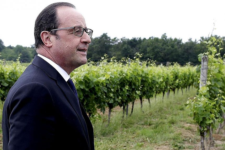 French President Francois Hollande stands in the Tutiac vineyard in Marcillac, France, after inaugurating the Bordeaux Vinexpo, the international wine and spirits exhibition on Saturday. -- PHOTO: REUTERS