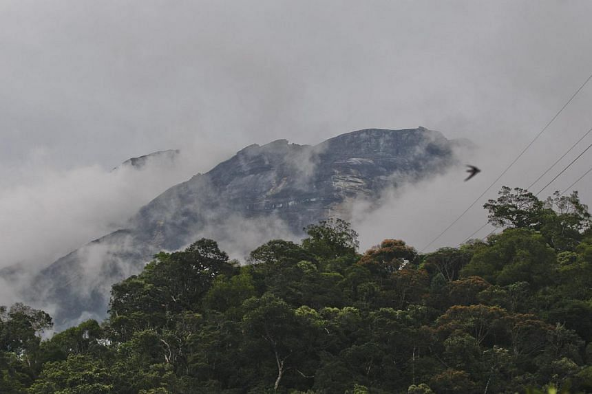 Tonnes of mud, boulders, rocks and debris flowed down Mount Kinabalu after three days of heavy rain, forcing the evacuation of hundreds of people from their homes at the foothills of the mountain. -- PHOTO: EPA