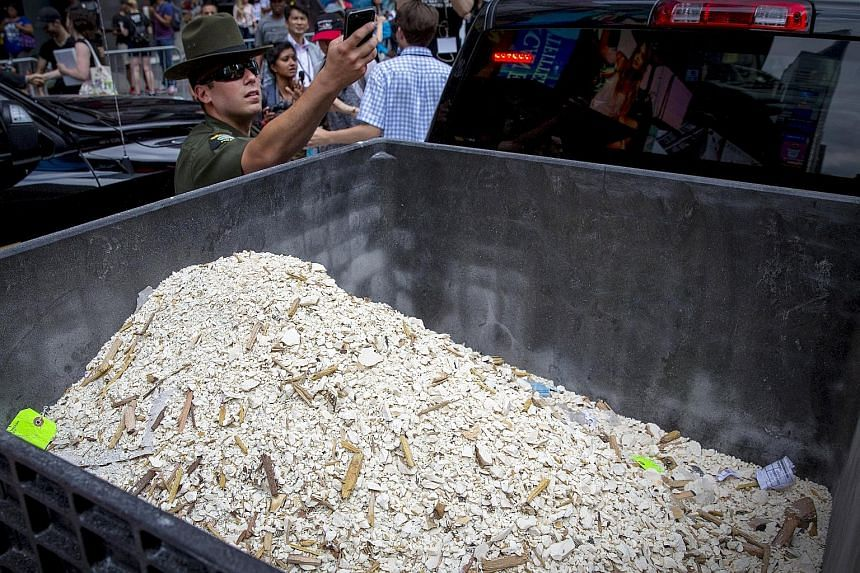 (Top) More than a tonne of ivory confiscated by law enforcement on display before being destroyed in Times Square last Friday. (Below) The ivory trinkets were placed on a conveyor belt that fed them to an enormous crusher. (Bottom) A New York environ