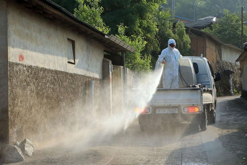 A South Korean health worker sprays antiseptic solution at a village in Sunchang County.