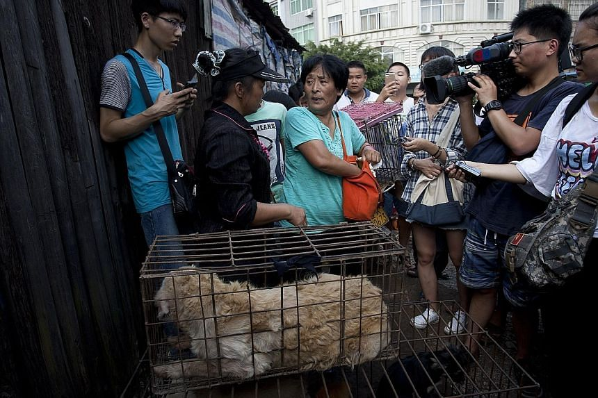 Ms Yang Xiaoyun (centre), 65, spent about 7,000 yuan buying 100 dogs at a market in Yulin on Saturday to save the animals. She plans to raise them in a farm. The locals believe dog meat is no different from pork and they should be free to enjoy their