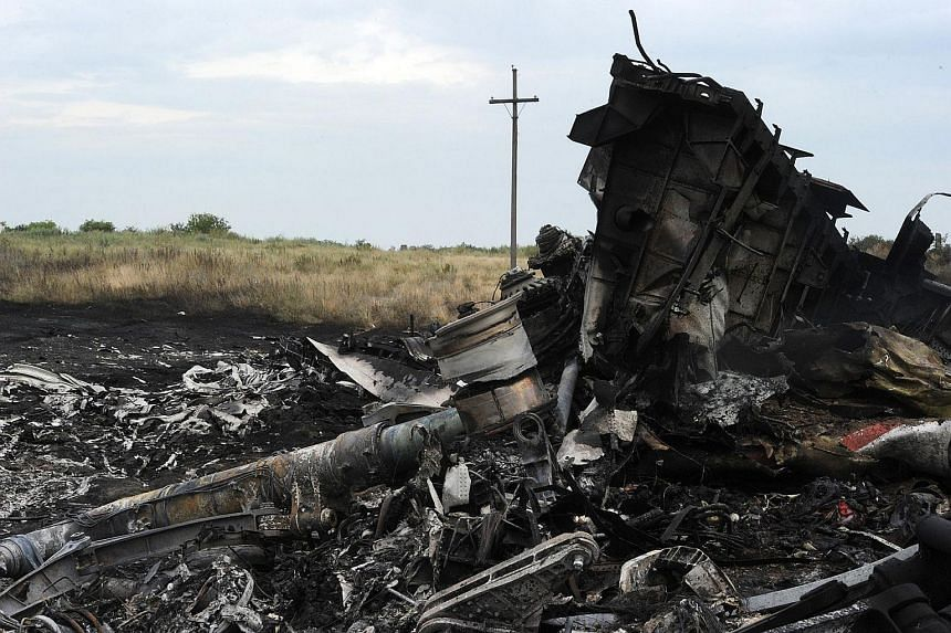 Wreckage from Malaysian Airlines flight MH17 is seen in a field near the town of Shaktarsk in Ukraine on July 18, 2014. The Netherlands is looking to form an international tribunal to prosecute those suspected of downing the airliner over rebel-held