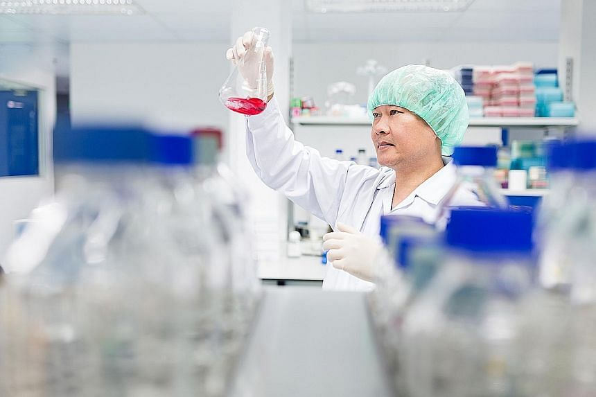 Dr Phan Toan-Thang, group chief scientific officer at CellResearch Corporation, in the laboratory. The home-grown biomedical firm has developed stem cell treatments for severe burns and injuries, and is working with American stem cell research leader