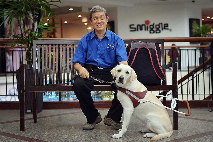 Mr Kua Cheng Hock, who was born blind, with Kendra, a labrador retriever. He succeeded in gaining acceptance for guide dogs in Singapore only on his second try. He repatriated his first dog after just two years.