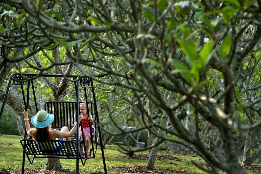 Singapore Botanic Gardens has been ranked the number one park in Asia in the TripAdvisor Travellers' Choice Awards for attractions. PHOTO: ST FILE