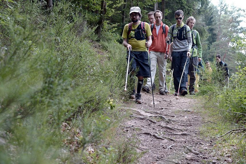People with visual impairment take part in a hike with a white cane and a GPS device using voice navigation in Reipertswiller, eastern France, on June 25, 2015.