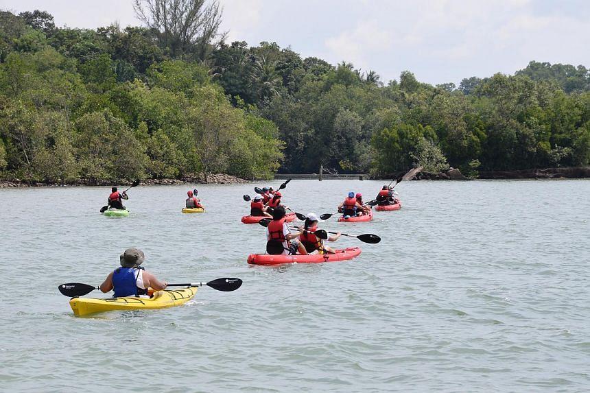 Join a mangrove kayaking expedition at Pulau Ubin.