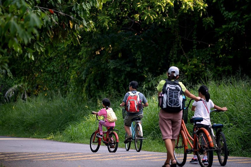 Cycling is one of the best ways to see Pulau Ubin.