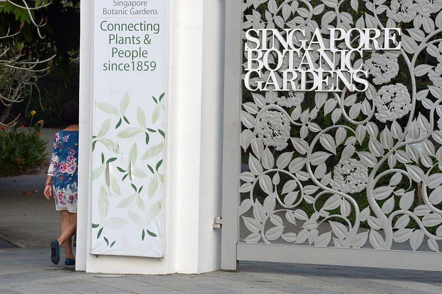 The entrance of the Singapore Botanic Gardens from Cluny Road.