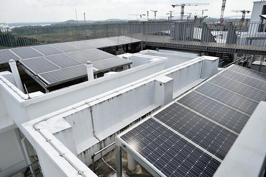 Solar panels on the roofs and the Eco Deck at Treelodge@ Punggol.