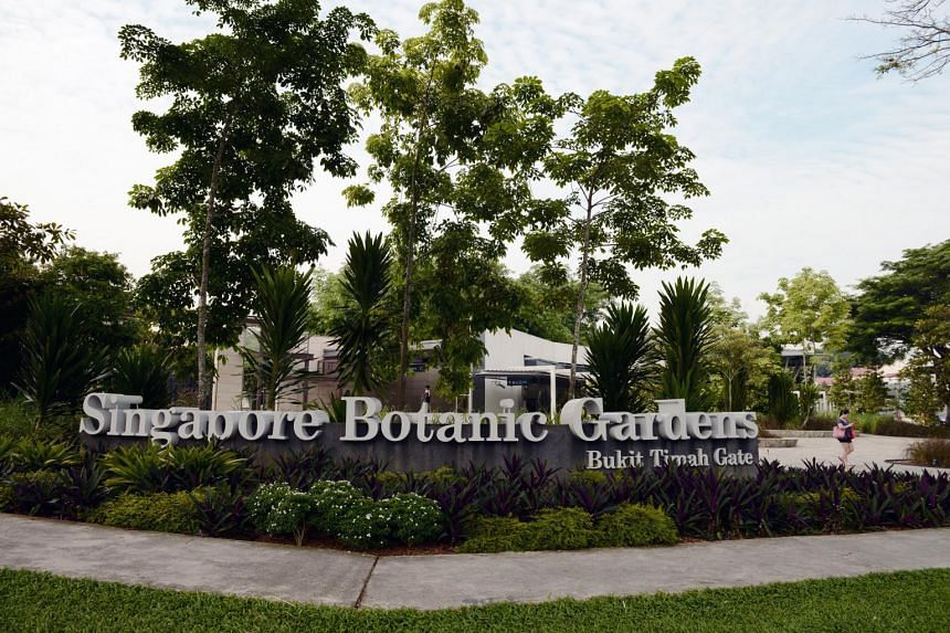 News that the Singapore Botanic Gardens was granted Unesco World Heritage Site status was greeted by congratulations online.