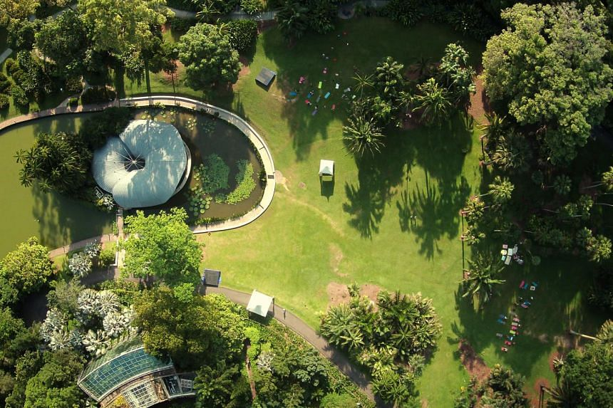 Above: An aerial view of Symphony Lake, which has a large concert stage built on an islet in the middle of the artificial lake. It is located in the Central Core of the Gardens. On the right side of the photo, people are seen doing their morning exer