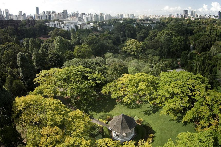An aerial view of the Botanic Gardens.
