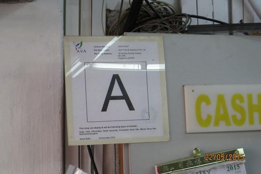 Acres found 13 pet shops that did not display their pet shop-grade decals, but AVA found that only seven did not do so.
