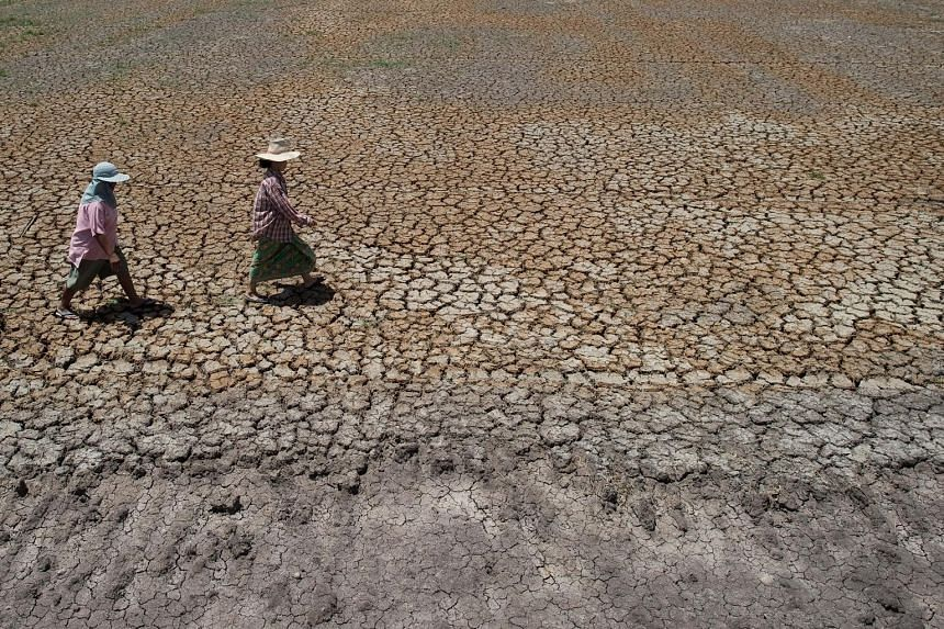 The current drought in Bang Pla Ma district, in Suphanburi province, is forcing impoverished Thai farmers deeper into debt and heaping fresh pain on an already weak economy.