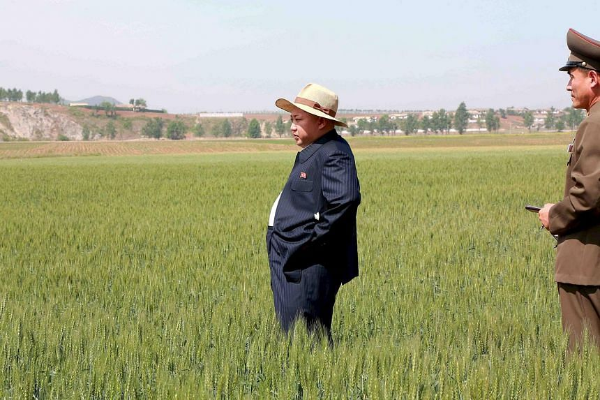 North Korean leader Kim Jong Un visiting a farm in an undated photo released on June 1.