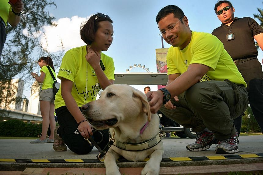 Minister of State for National Development Desmond Lee (second, right) with Ms Cassandra Chiu and her guide dog Esme at the Run for Light fitness event.